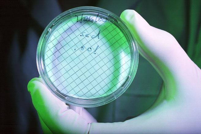 Vi khuẩn có đầy trên các tờ tiền