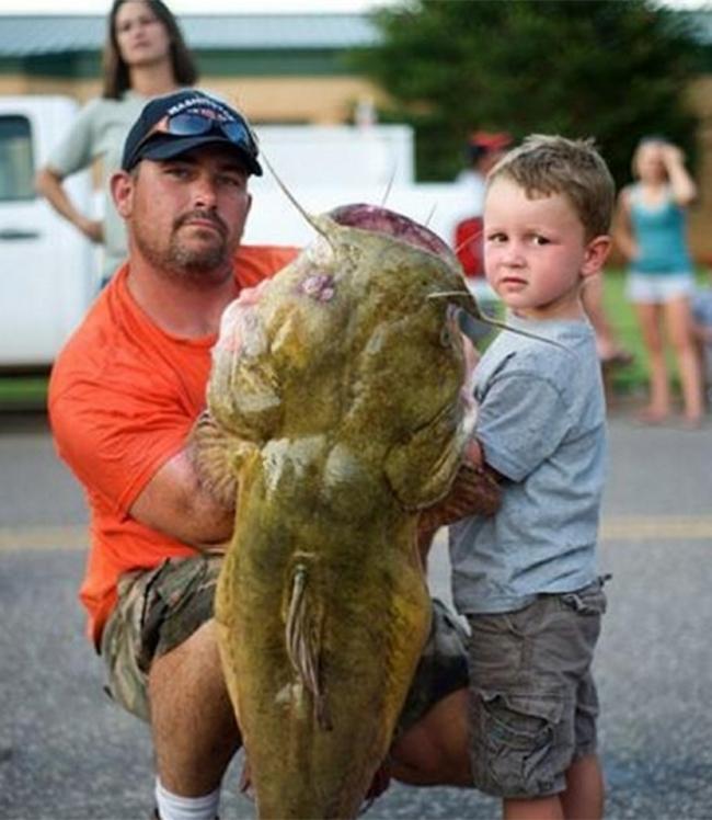 Chú cá này có thân hình tương đương với 1 em nhỏ