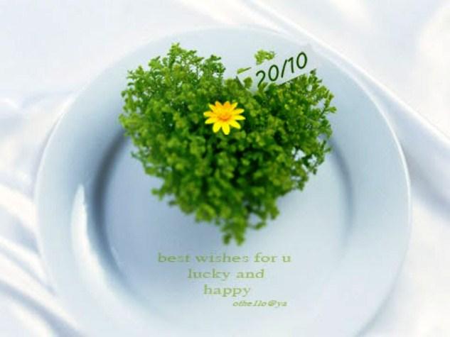 Thiệp đẹp cho ngày Phụ nữ Việt Nam 20-10 (8)