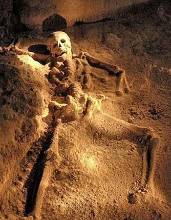 Qua nhiều cuộc khai quật, các nhà nghiên cứu phát hiện nhiều bộ xương đã hóa đá