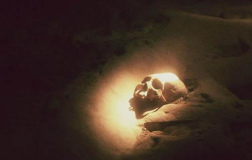 Các bộ xương được tìm thấy rải rác ở khắp 9 khoang trong hang