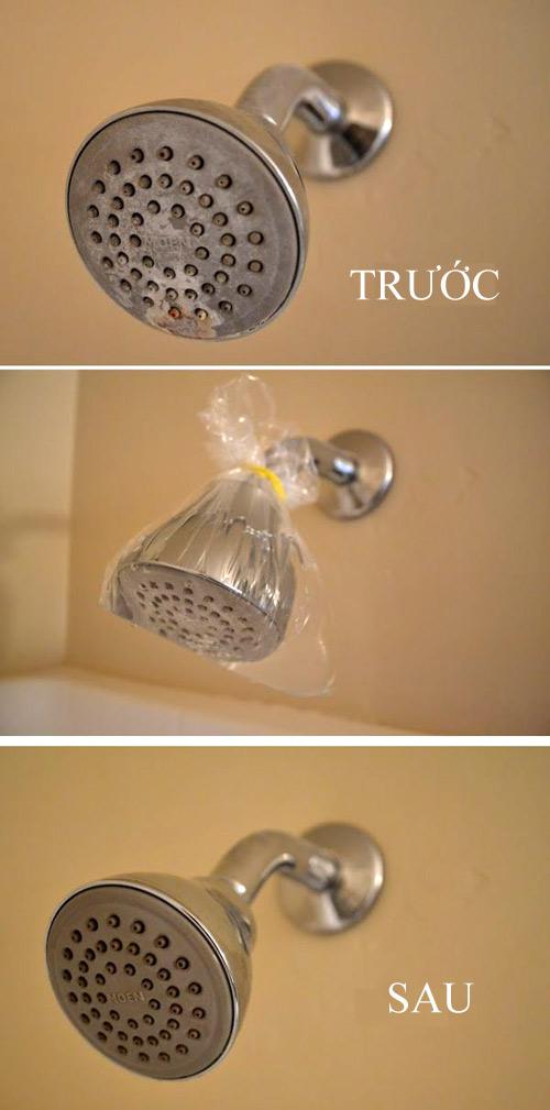 Làm sạch bầu sen của vòi tắm