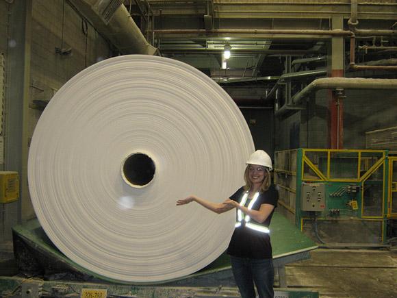 Cuộn giấy vệ sinh lớn nhất thế giới