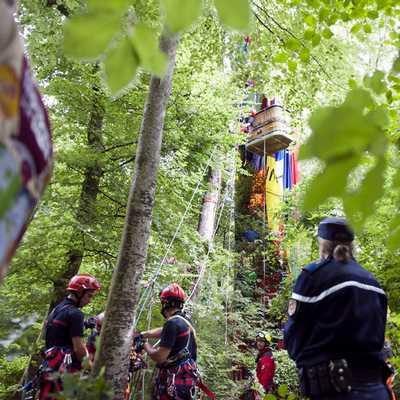 Cảnh sát và lính cứu hỏa đang giải cứu 1 quả khinh khí cầu bị mắc kẹt trong rừng rậm