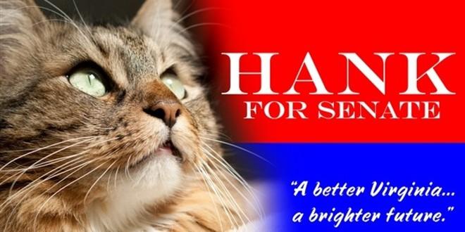Một tấm áp phích với hình ảnh mèo Hank trong chiến dịch tranh cử vào Thượng viện tại bang Virginia vào năm 2012. Ảnh: