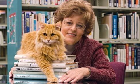 Nhờ mèo Dewey mà lợi nhuận của thư viện thành phố Spencer tăng đáng kể. Ảnh: AP