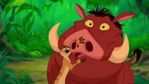 Cặp đôi hài hước Timon và Pumbaa.