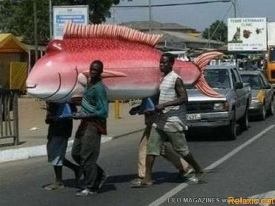 Quan tài hình con cá