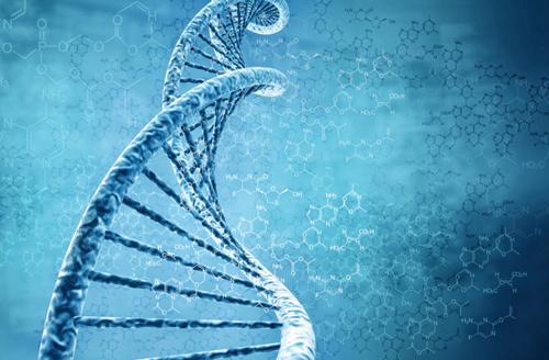 Các bài kiểm tra máu sẽ được thay thế bằng thiết bị thăm dò nano qua hình thức tiêm không đau, nhằm thu thập dữ liệu.
