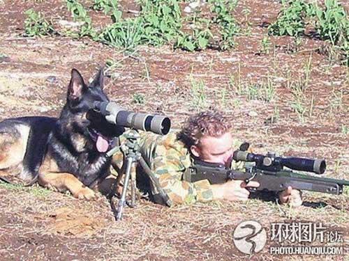 Ảnh vui về các binh sĩ trên thế giới
