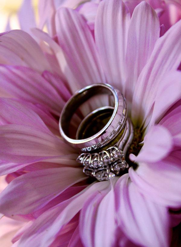 Nhẫn cưới của Nick và Carrie (2010)