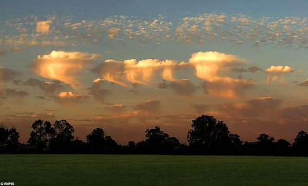 Đám mây Altocumulus