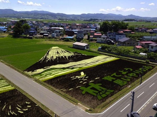 Núi Phú Sĩ, vừa được UNESCO công nhận là di sản thế giới.