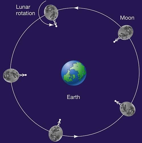 dù Mặt trăng di chuyển đến vị trí nào so với Trái đất, cũng chỉ có một mặt của nó hướng về Trái đất.
