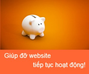 Lời kêu gọi giúp đỡ tài chính từ Nhungdieuthuvi.com