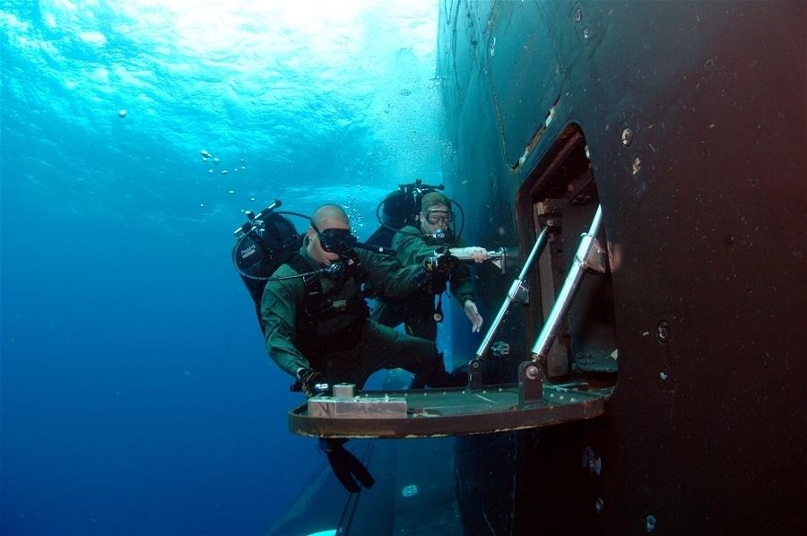 Các chiến binh SEAL không sợ cá mập. (Ảnh: West Coast Action Alliance)