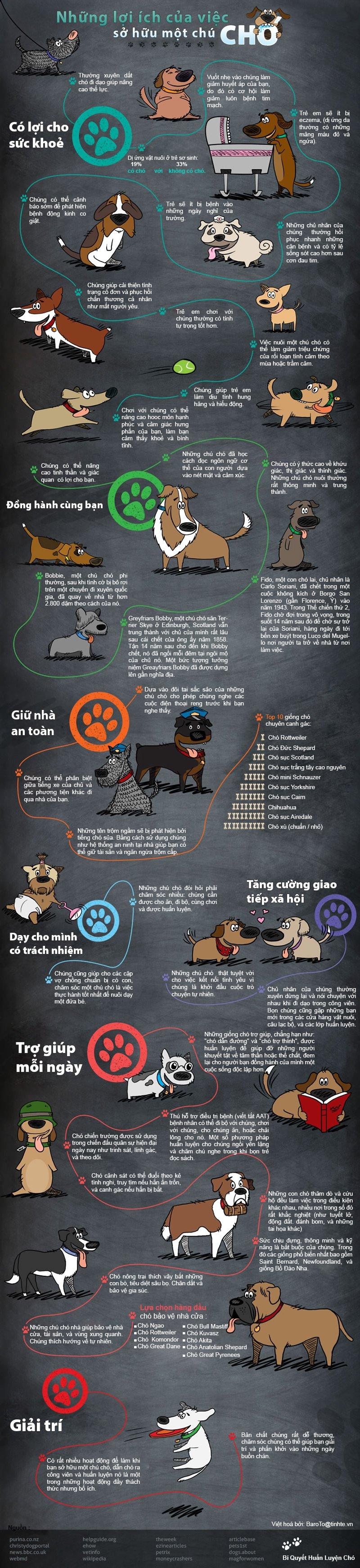 Infographic 38 lợi ích từ việc nuôi chó