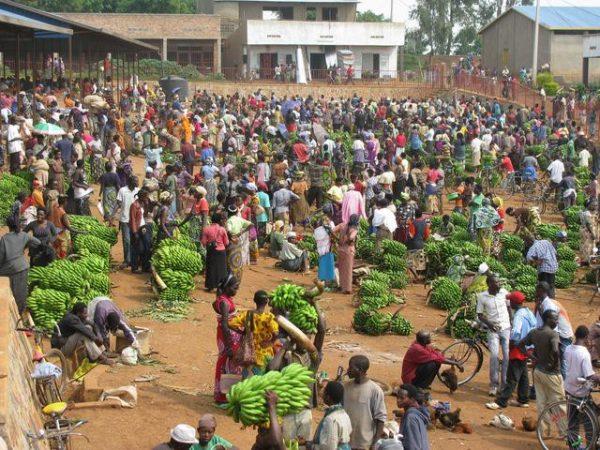 Chợ chuối đông đúc ở một vùng lại quê.