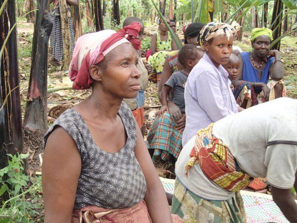 Bà Olive Kasande đã có 30 năm kinh nghiệm làm bia chuối.