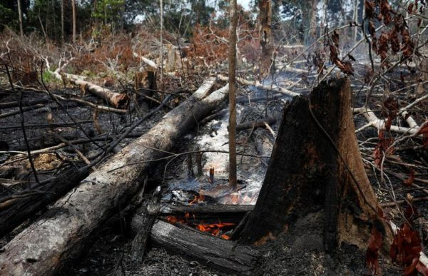 Đáng chú ý, số lượng đám cháy ở rừng Amazon tại Brazil đã đạt mức kỷ lục trong năm nay. Tổng cộng 72.843 đám cháy xảy ra ở Brazil trong năm 2019 và hơn một nửa trong số đó nằm ở vùng Amazon. Ảnh: Reuters