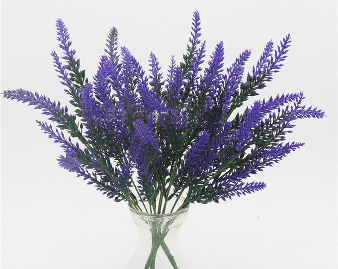 Cây trồng ngày Tết thanh lọc không khí: Hoa oải hương