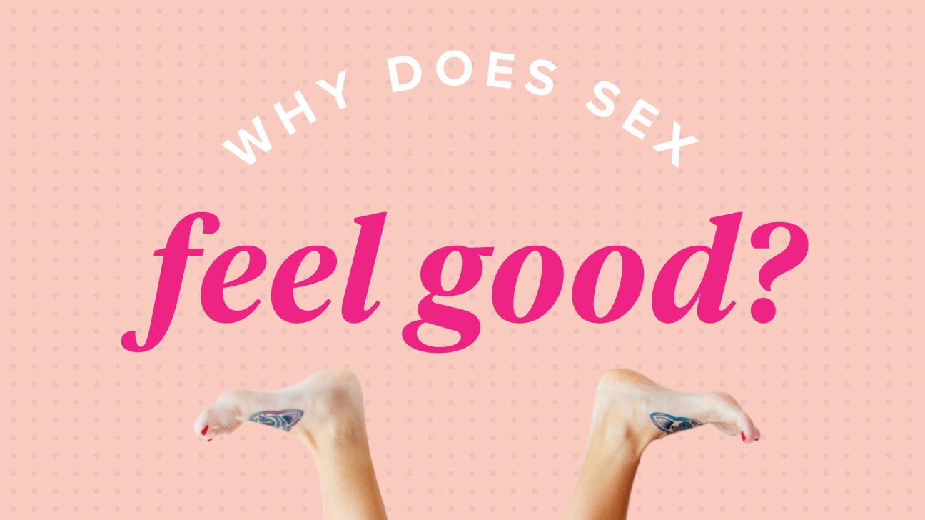 Tại sao khi quan hệ tình dục lại thấy sướng?! Cảm giác hạnh phúc nảy sinh khi nào?!