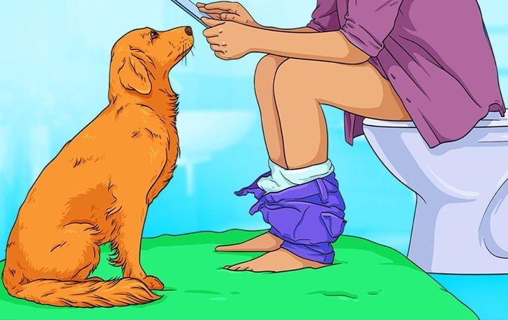 Tại sao chó theo bạn vào phòng tắm. Ảnh minh hoạ: brightside.me
