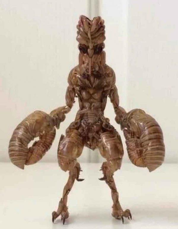 Người ngoài hành tinh Baltan làm bằng vỏ ve sầu. Tác giả: Tanikurakai