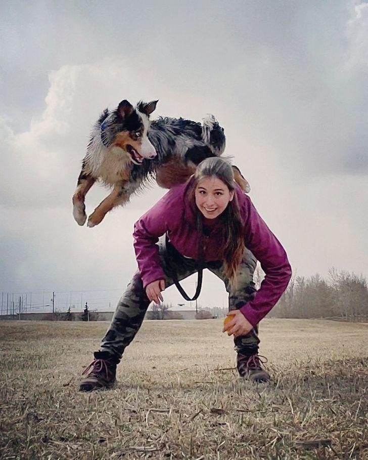 Giữ cho thú cưng của bạn hoạt độngvà giải trí sẽ đảm bảo rằng cơ thể, trí óc và sự thông minh của chúng sẽ phát triển.
