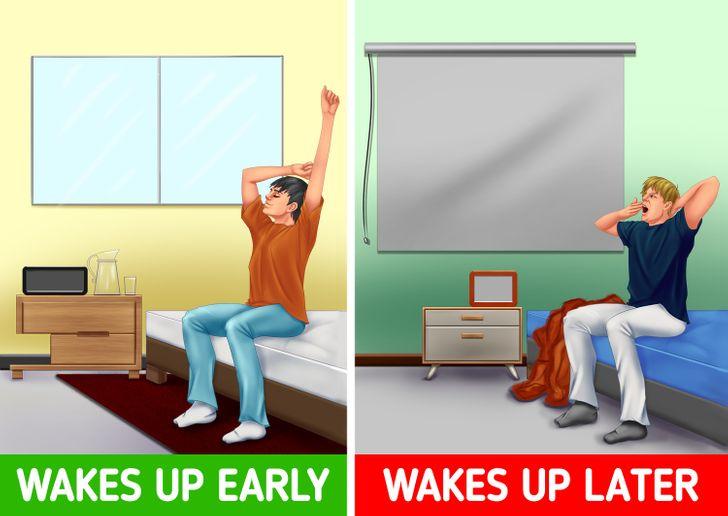 Cuộckhảo sátcủa OnBuycũng phát hiện ra rằng nhân viên trung bình của công ty thức dậy lúc 7:06 sáng vào một ngày trong tuần