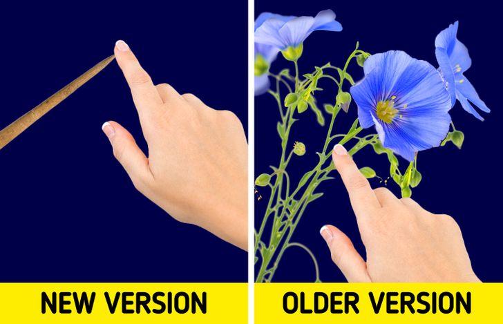 Một trong nhiều chi tiết đã được thay đổi theo thời gian là đồ vật mà công chúa bị cạy ngón tay