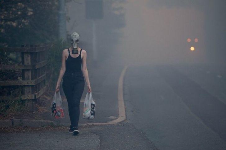 Cháy rừng không phải là lý do chính đáng để bạn bỏ qua việc đi siêu thị.