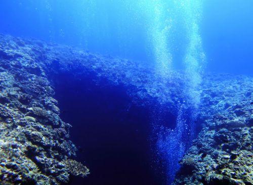 Đáy đại dương. Ảnh Shutterstock