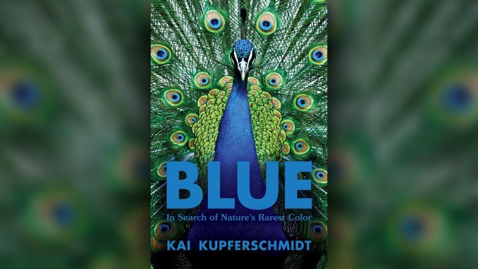 """Trong cuốn sách """"Blue"""", tác giả Kai Kupferschmidt khám phá khoa học đằng sau màu sắc khó nắm bắt này."""
